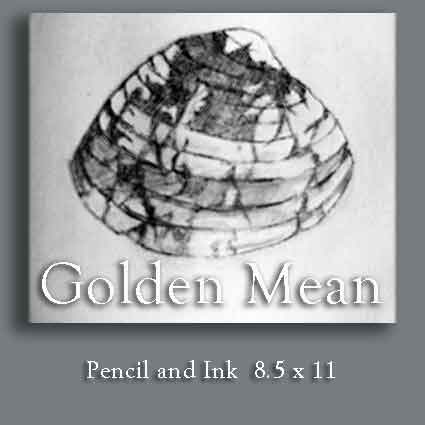 Golden Mean Shell