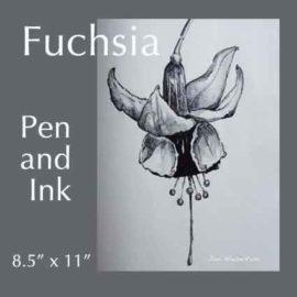 Art Lesson fuchsia Pen and Ink by Jan Hazelton