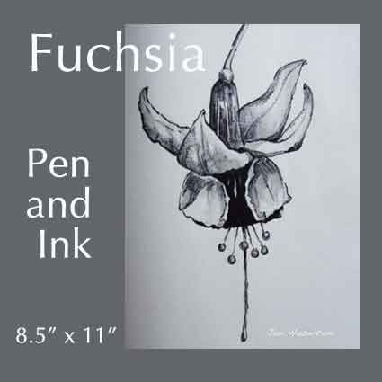Art Lesson fuchsia Pen and Ink by Jan Hazelton